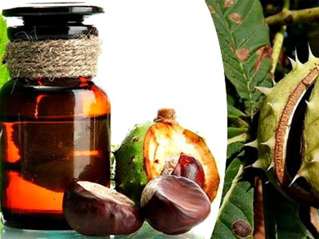 Каштаны для суставов: лечение настойкой и другие полезные рецепты