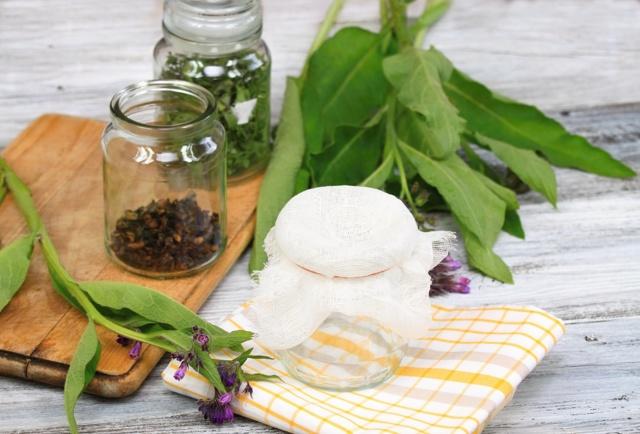 Окопник лекарственный для суставов: рецепты мазей и настоек, отзывы о применении