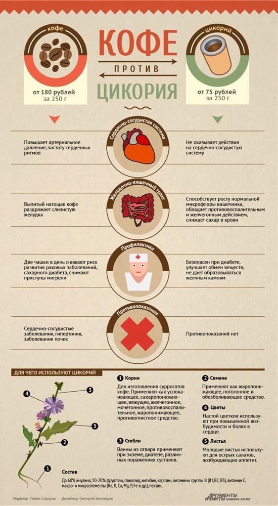 Цикорий при подагре: можно пить или нет, польза и вред