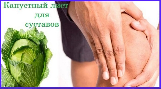 Артроз коленного сустава: лечение в домашних условиях народными средствами