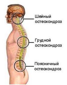 Массаж при остеохондрозе шейного отдела позвоночника: отзывы о лучших методиках
